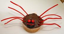 nice spider cupcake