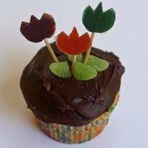 Tulip cupcakes